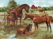 Horse Family - 300pc Jigsaw Puzzle by Ravensburger