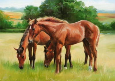 Grassy Horses - 1500pc Jigsaw Puzzle by Ravensburger
