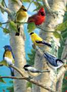Hautman Brothers: Songbird Favorites - 1000pc Spring Jigsaw Puzzle