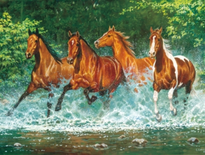 Cascade Run - 750pc Jigsaw Puzzle by Masterpieces