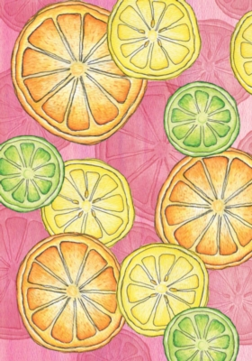 Citrus Toss - Garden Flag by Toland
