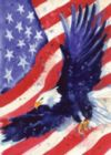 Liberty Eagle - Garden Flag by Toland