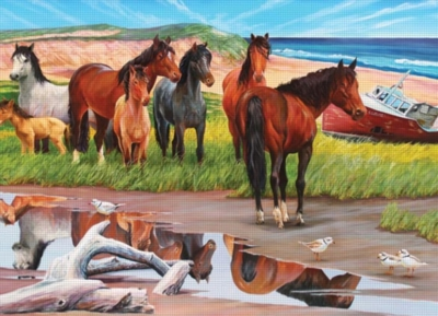 Cobble Hill Jigsaw Puzzles - Sable Island