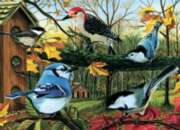 Blue Jay and Friends - 1000pc Jigsaw Puzzle by Cobble Hill