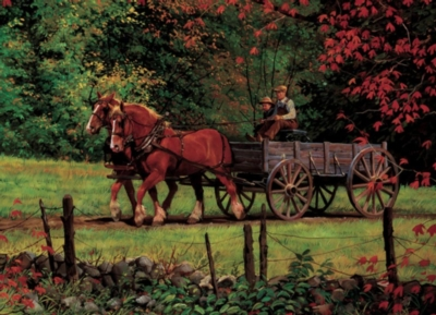 Cobble Hill Jigsaw Puzzles - Autumn Ride
