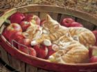 Apples and Oranges - 500pc Jigsaw Puzzle by Cobble Hill