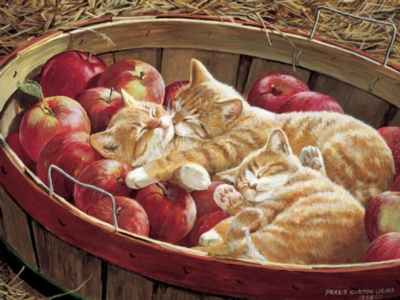 Cobble Hill Jigsaw Puzzles - Apples and Oranges