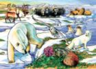 Arctic Adventure - 35pc Tray Puzzle by Cobble Hill
