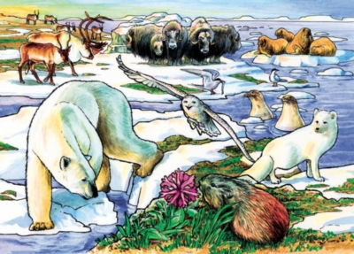 Cobble Hill Children's Puzzles - Arctic Adventure