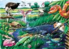 Animals of the Everglades - 35pc Tray Puzzle by Cobble Hill