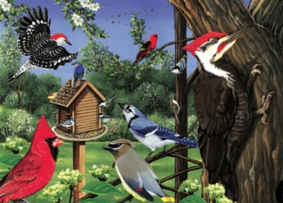 Around the Birdfeeder - 35pc Tray Puzzle by Cobble Hill