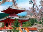 Pagoda Garden - 750pc Photo Seek Spring Jigsaw Puzzle Challenge by Buffalo Games