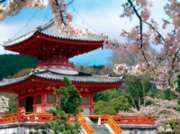 Pagoda Garden - 750pc Photo Seek Spring Jigsaw Puzzle Challenge by Buffalo Games