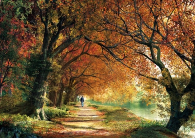 Forever Autumn - 2000pc Jigsaw Puzzle By Educa