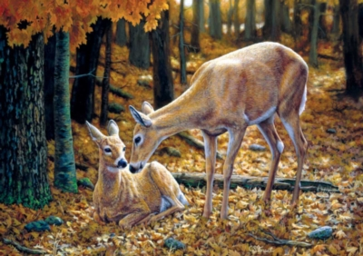 Large Format Jigsaw Puzzles - Autumn Innocence
