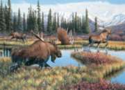 Moose Travels - 1000pc Jigsaw Puzzle by Cobble Hill