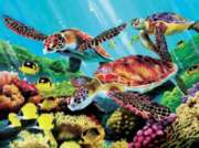 Cobble Hill Jigsaw Puzzles - Molokini Turtles