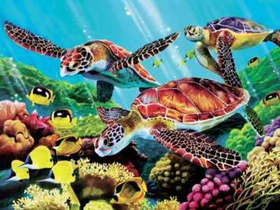 Molokini Turtles - 500pc Jigsaw Puzzle by Cobble Hill