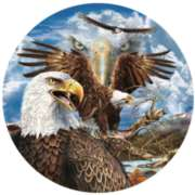 13 Eagles - 1000pc Jigsaw Puzzle By Sunsout