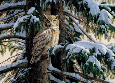 Cobble Hill Jigsaw Puzzles - Snowy Perch