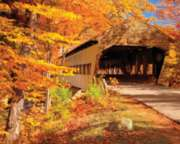 Autumn Covered Bridge - 1000pc Jigsaw Puzzle by Springbok