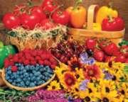Springbok Jigsaw Puzzles - Garden Goodies