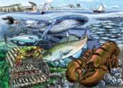 Cobble Hill Children's Puzzles - Life in the Atlantic Ocean