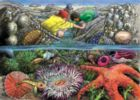 Exploring the Seashore - 35pc Tray Puzzle by Cobble Hill