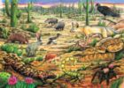 Life in the Desert - 35pc Tray Puzzle by Cobble Hill
