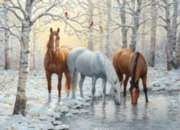 Winter Trio - 1000pc Horse Jigsaw Puzzle by Cobble Hill