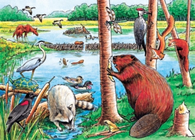 Cobble Hill Children's Puzzles - The Beaver Pond