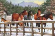 Snowy Pasture - 35pc Tray Puzzle by Cobble Hill