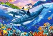 Hard Jigsaw Puzzles - Dolphin Lagoon