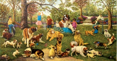 Dog Park - 500pc Jigsaw Puzzle By Sunsout