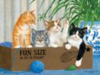 Fun Size - 500pc Jigsaw Puzzle By Sunsout