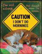 Large Format Jigsaw Puzzles - I Don't Do Mornings