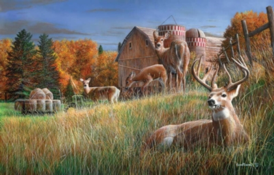 Autumn Respite - 1000pc Jigsaw Puzzle By Sunsout