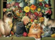Boucat - 1000pc Jigsaw Puzzle By Cobble Hill