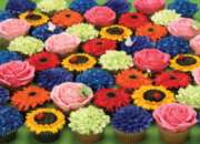 Cupcake Garden - 275pc Jigsaw Puzzle By Cobble Hill