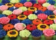 Cobble Hill Jigsaw Puzzles - Cupcake Garden