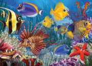 Wide-eyed Fishies - 400pc Family Style Jigsaw Puzzle By Cobble Hill