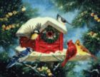 Cozy Bird House - 550pc Jigsaw Puzzle By White Mountain