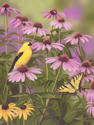 Butterfly & Finch - 550pc Jigsaw Puzzle By White Mountain