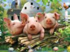 Three Little Pigs - 550pc Jigsaw Puzzle By White Mountain