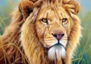 Jigsaw Puzzles - King of Beasts