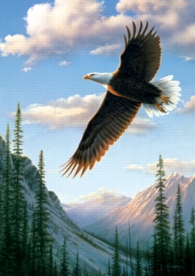 Soaring Eagle - 300pc Large Format Jigsaw Puzzle by Buffalo Games