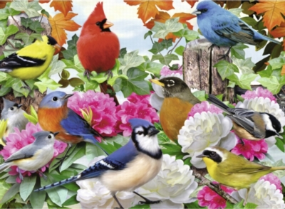 Garden Birds - 500pc Jigsaw Puzzle By Ravensburger