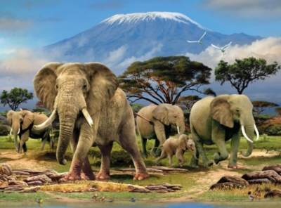 Animal Planet� - Elephants - 1000pc Jigsaw Puzzle By Ravensburger