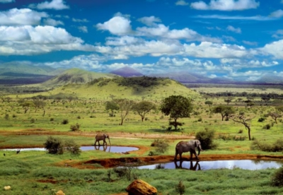 Tsavo National Park, Kenya - 500pc Jigsaw Puzzle By Educa
