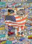 USA License Plates - 1000pc Suitcase Jigsaw Puzzle by Masterpieces